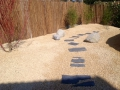 bassin jardin1