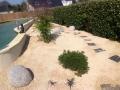 bassin jardin2