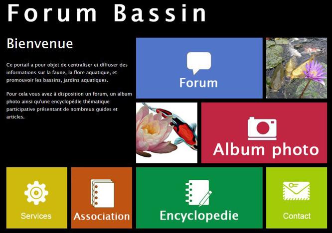 Forum-Bassin