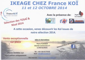 AFFICHE IKEAGE France koi 11 et 12 octobre jpg - Copie